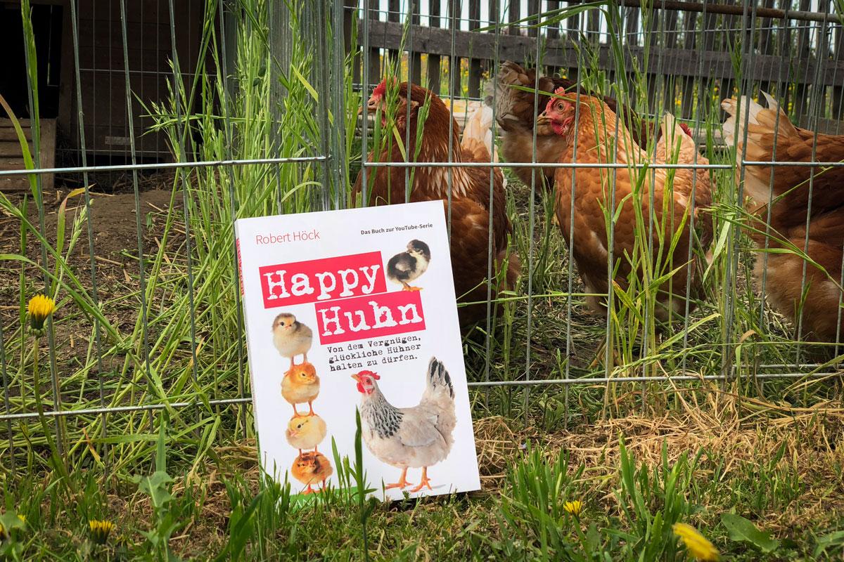 Happy Huhn Halte Glückliche Hühner Hühner Haltung Alle Infos